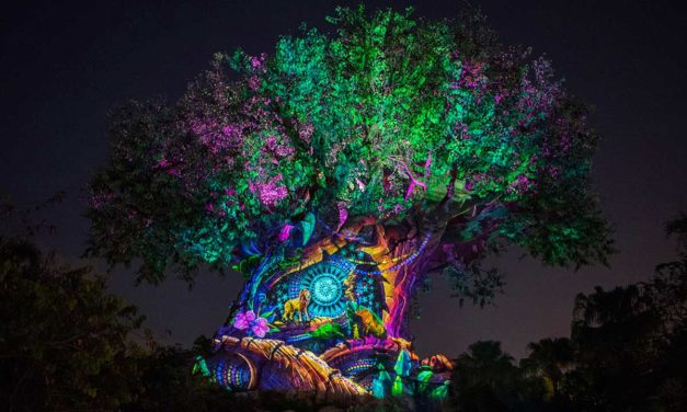 Celebrate New Year's Eve 2019 at Disney's Animal Kingdom